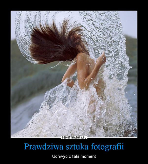 Prawdziwa sztuka fotografii – Uchwycić taki moment