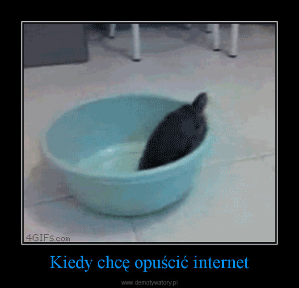 Kiedy chcę opuścić internet –