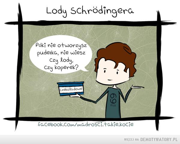 Lody Schrodingera –