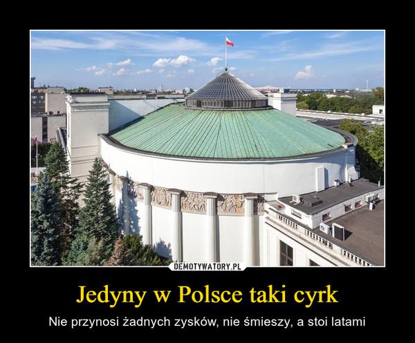 Jedyny w Polsce taki cyrk – Nie przynosi żadnych zysków, nie śmieszy, a stoi latami