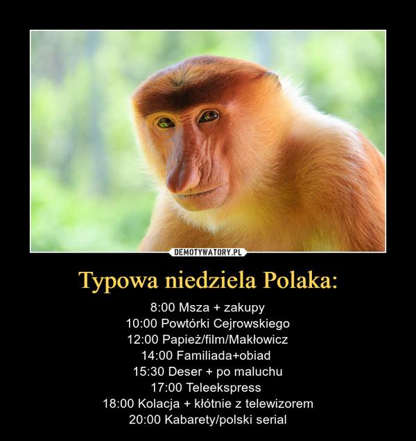 Typowa niedziela Polaka: – 8:00 Msza + zakupy10:00 Powtórki Cejrowskiego12:00 Papież/film/Makłowicz14:00 Familiada+obiad 15:30 Deser + po maluchu17:00 Teleekspress 18:00 Kolacja + kłótnie z telewizorem20:00 Kabarety/polski serial