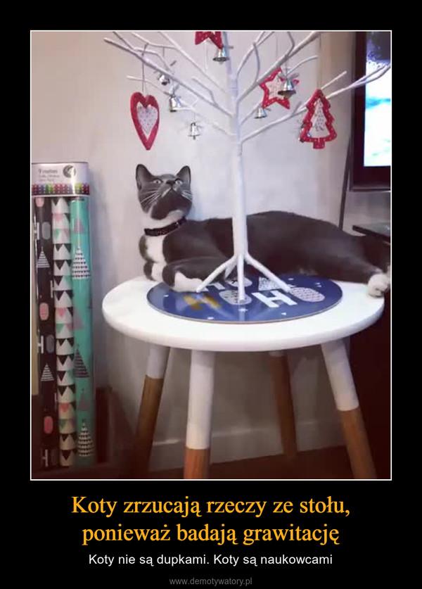 Koty zrzucają rzeczy ze stołu,ponieważ badają grawitację – Koty nie są dupkami. Koty są naukowcami