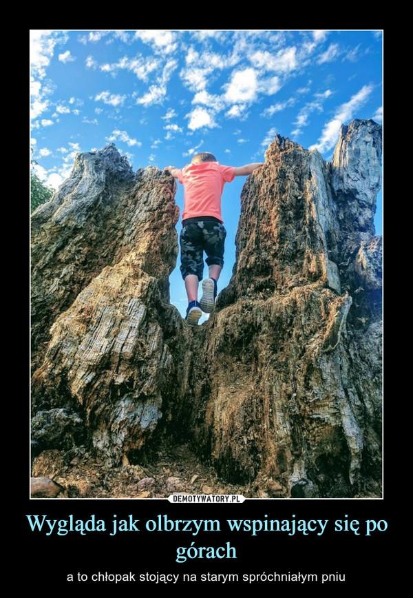 Wygląda jak olbrzym wspinający się po górach – a to chłopak stojący na starym spróchniałym pniu