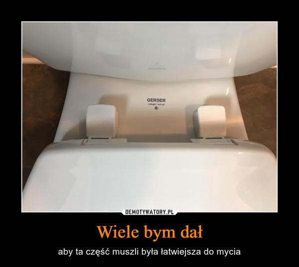 Wiele bym dał – aby ta część muszli była łatwiejsza do mycia