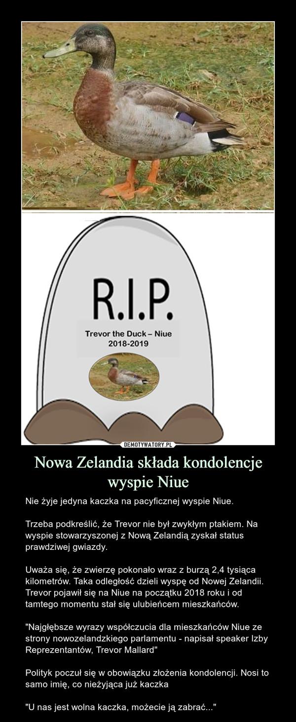 """Nowa Zelandia składa kondolencje wyspie Niue – Nie żyje jedyna kaczka na pacyficznej wyspie Niue.Trzeba podkreślić, że Trevor nie był zwykłym ptakiem. Na wyspie stowarzyszonej z Nową Zelandią zyskał status prawdziwej gwiazdy.Uważa się, że zwierzę pokonało wraz z burzą 2,4 tysiąca kilometrów. Taka odległość dzieli wyspę od Nowej Zelandii. Trevor pojawił się na Niue na początku 2018 roku i od tamtego momentu stał się ulubieńcem mieszkańców.""""Najgłębsze wyrazy współczucia dla mieszkańców Niue ze strony nowozelandzkiego parlamentu - napisał speaker Izby Reprezentantów, Trevor Mallard""""Polityk poczuł się w obowiązku złożenia kondolencji. Nosi to samo imię, co nieżyjąca już kaczka""""U nas jest wolna kaczka, możecie ją zabrać..."""""""